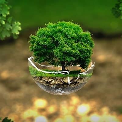 Catalogo Gadget Ecologici