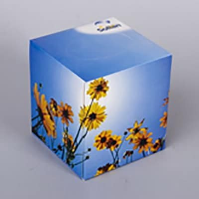 Box Cubo